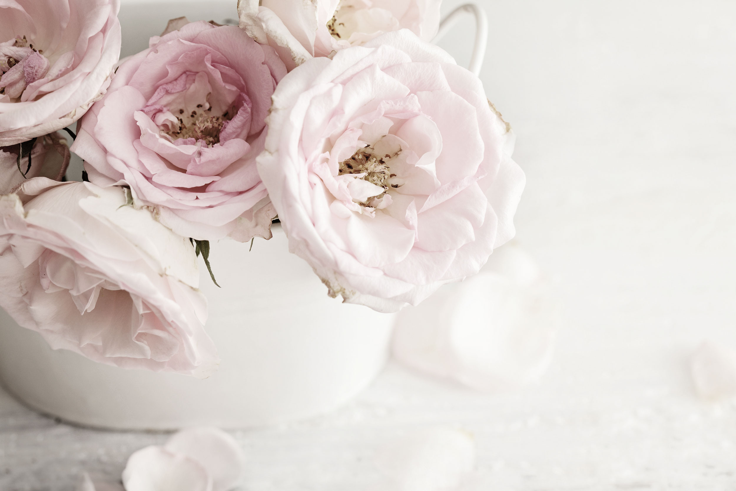 wedding flowers photography cleveland ohio